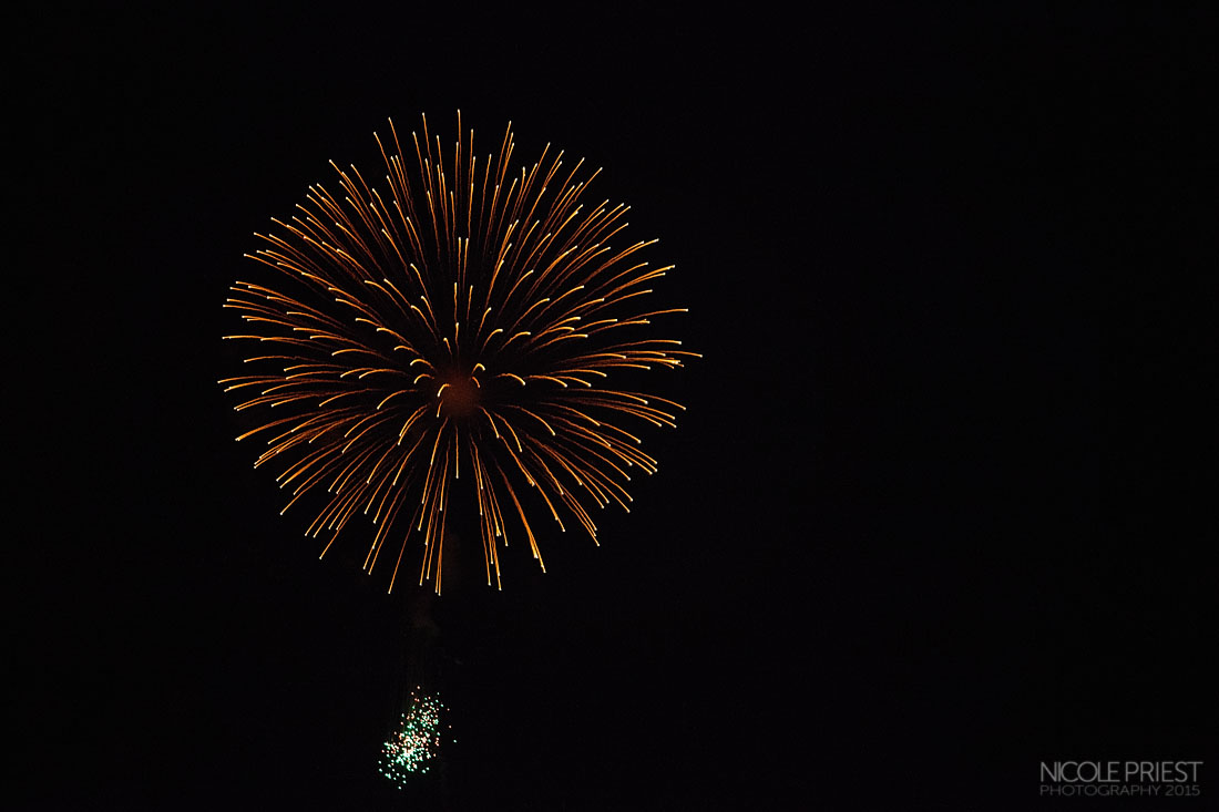 Nicole Priest Photography-Dana Point Harbor Fourth of July 3-copy